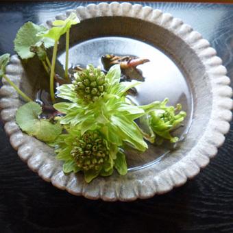 お茶のお稽古のさいちゅうに棗を落としました!_c0195909_11353882.jpg