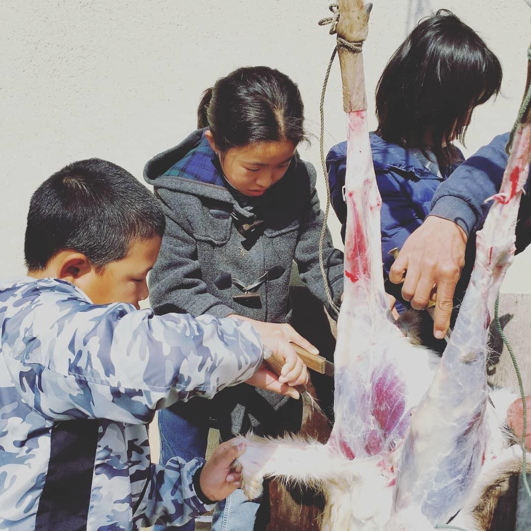 鹿肉解体など暮らしの仕事_f0208315_20163925.jpg