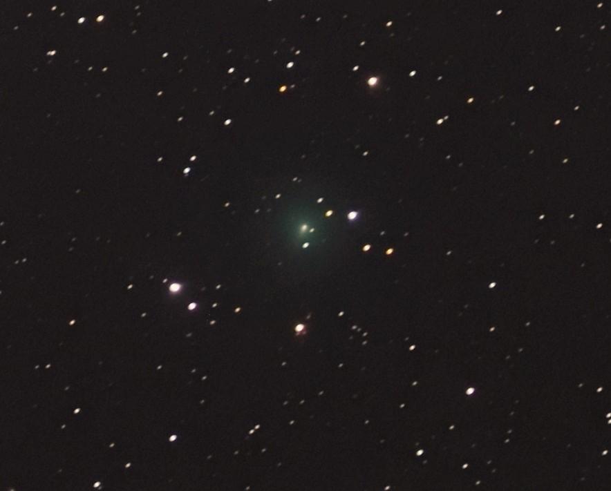 3/19のアトラス彗星(C/2019 Y4)_e0344621_11124492.jpg