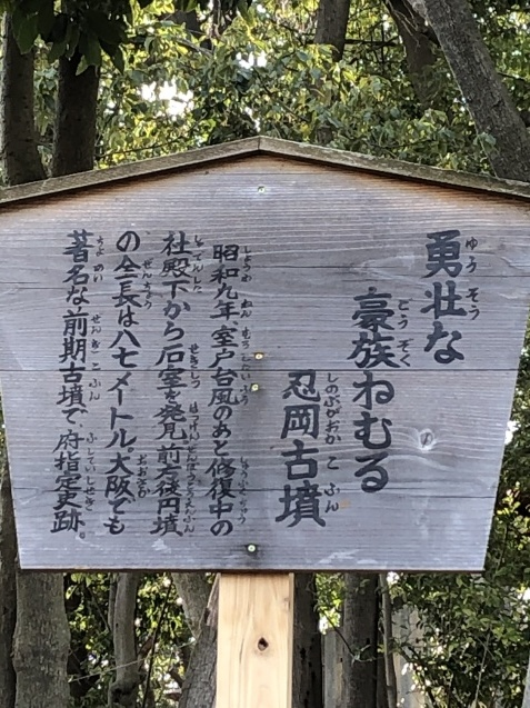 日本人はコロナの子_b0409627_10284704.jpg
