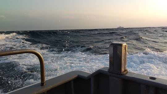 今週もトンジギ❕❕乗船キャスティングヒート❕❕_e0212944_734573.jpg