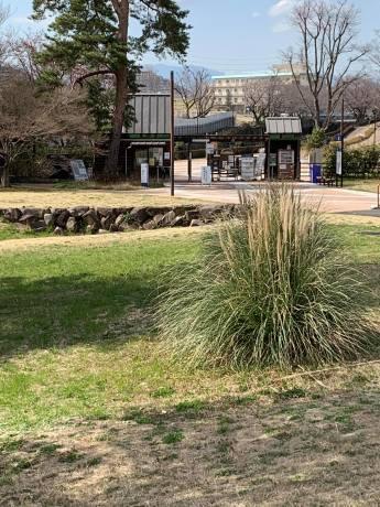 昭和記念公園パックウォークコースのご案内~デイ麦ママさんのナビにて♪ _c0372561_00244949.jpg