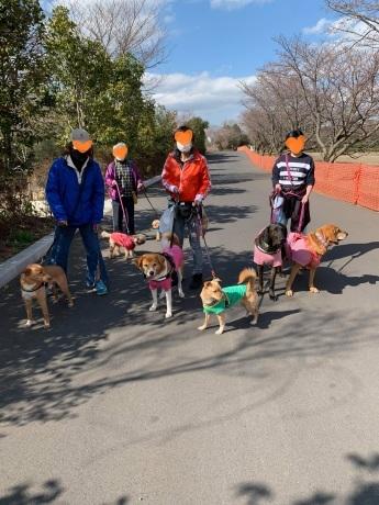 昭和記念公園パックウォークコースのご案内~デイ麦ママさんのナビにて♪ _c0372561_00474672.jpg