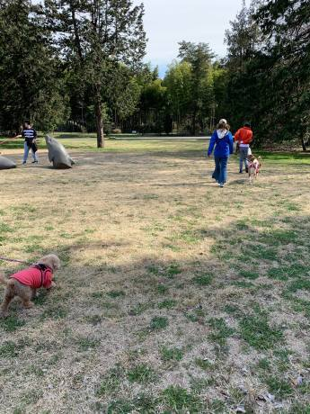 昭和記念公園パックウォークコースのご案内~デイ麦ママさんのナビにて♪ _c0372561_16142584.jpg