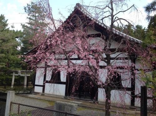 春のひととき『ちくちく手縫いの会』ご報告_b0153663_16153757.jpeg