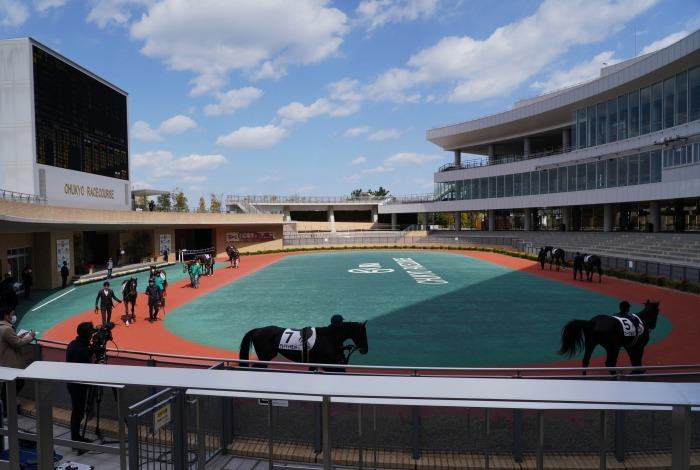 現役最強馬の1頭サートゥルナーリアが出走、第56回金鯱賞 GⅡ_b0173867_21154510.jpg