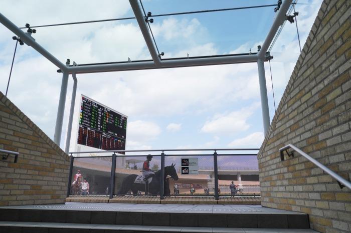現役最強馬の1頭サートゥルナーリアが出走、第56回金鯱賞 GⅡ_b0173867_21161413.jpg
