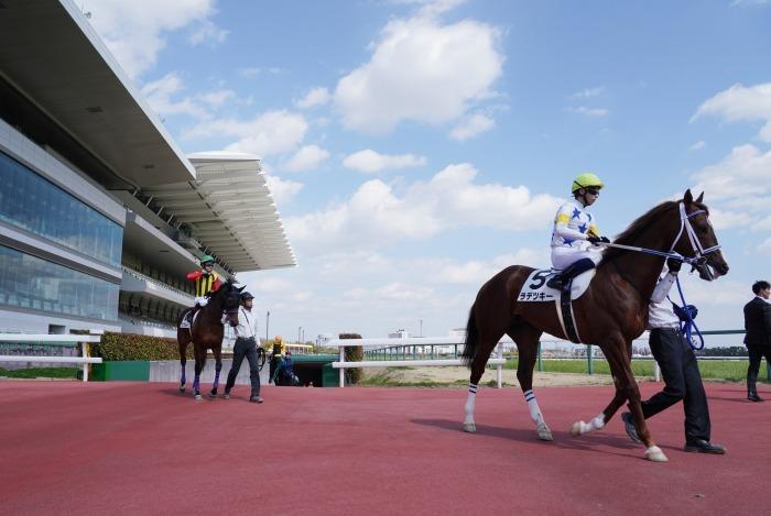 現役最強馬の1頭サートゥルナーリアが出走、第56回金鯱賞 GⅡ_b0173867_21163057.jpg