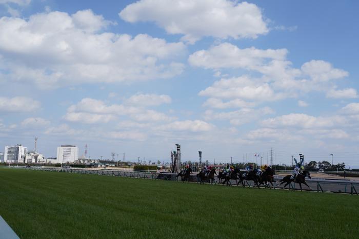 現役最強馬の1頭サートゥルナーリアが出走、第56回金鯱賞 GⅡ_b0173867_21164593.jpg