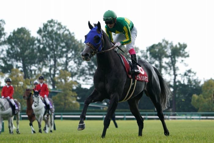 現役最強馬の1頭サートゥルナーリアが出走、第56回金鯱賞 GⅡ_b0173867_21171902.jpg