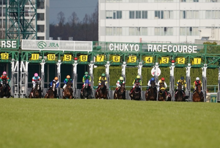 現役最強馬の1頭サートゥルナーリアが出走、第56回金鯱賞 GⅡ_b0173867_21173605.jpg