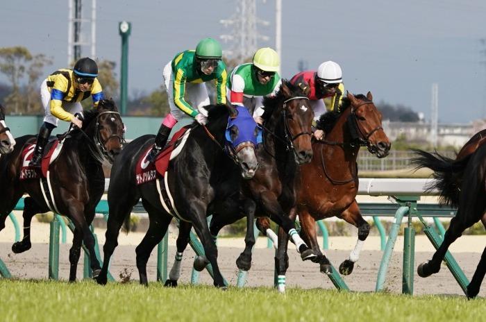 現役最強馬の1頭サートゥルナーリアが出走、第56回金鯱賞 GⅡ_b0173867_21182730.jpg