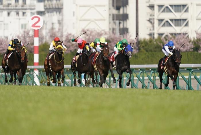 現役最強馬の1頭サートゥルナーリアが出走、第56回金鯱賞 GⅡ_b0173867_21185778.jpg