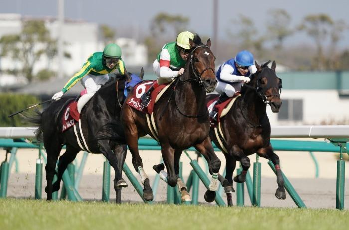 現役最強馬の1頭サートゥルナーリアが出走、第56回金鯱賞 GⅡ_b0173867_21191266.jpg
