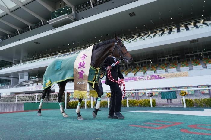 現役最強馬の1頭サートゥルナーリアが出走、第56回金鯱賞 GⅡ_b0173867_21195032.jpg