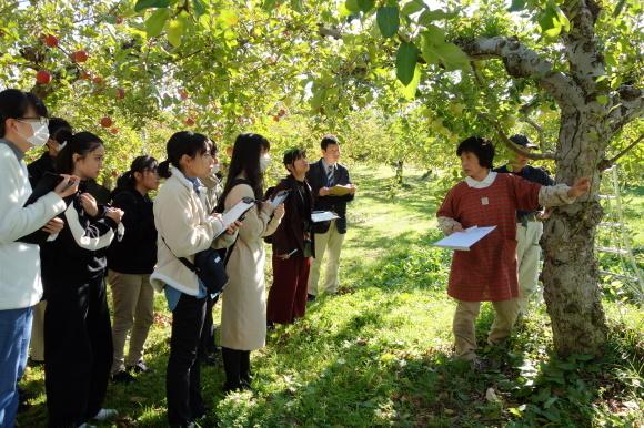 9期生考案!りんごと米粉のカップケーキ「りんごda米(だべい)」が販売開始!_f0238767_13405553.jpg