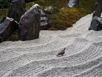 京都旅〜雨の京都もなかなかよろしい_e0078071_20044274.jpg