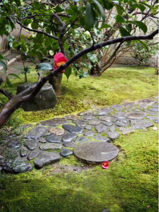 京都旅〜雨の京都もなかなかよろしい_e0078071_21031442.jpg