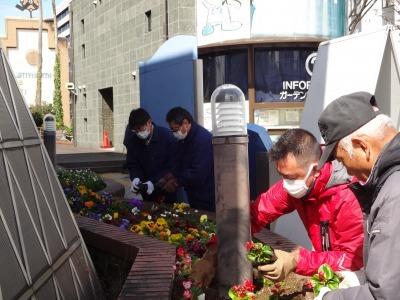 ガーデンふ頭総合案内所前花壇の植替えR2.3.16_d0338682_11011271.jpg