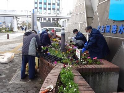 ガーデンふ頭総合案内所前花壇の植替えR2.3.16_d0338682_11024597.jpg
