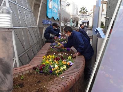 ガーデンふ頭総合案内所前花壇の植替えR2.3.16_d0338682_11025332.jpg