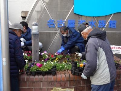 ガーデンふ頭総合案内所前花壇の植替えR2.3.16_d0338682_11030594.jpg