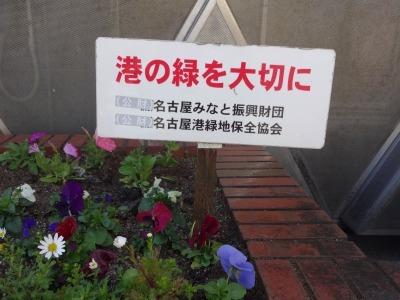 ガーデンふ頭総合案内所前花壇の植替えR2.3.16_d0338682_11034459.jpg