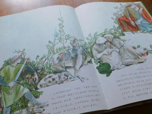 Book:ねむりひめ_c0084183_17280838.jpg