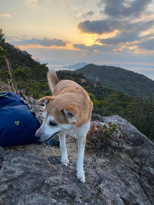 糸島十坊山の続きで夕日を見に立石山へ_f0232994_15153428.jpg