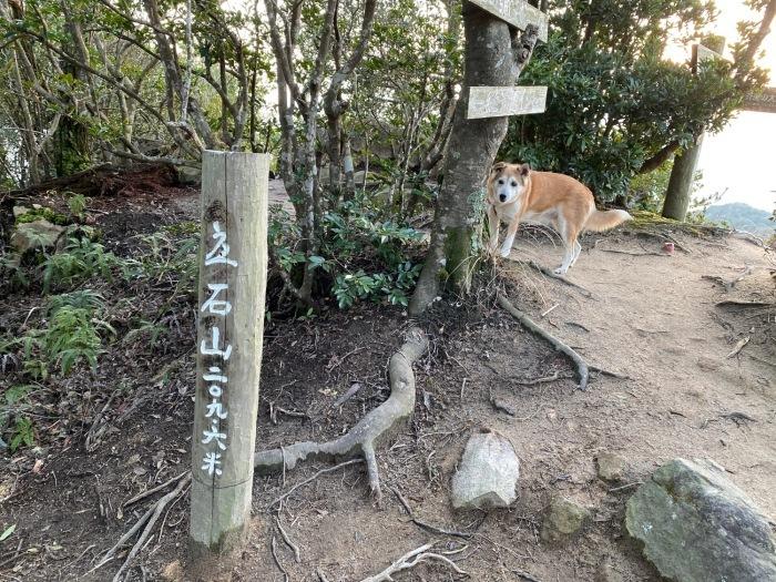 糸島十坊山の続きで夕日を見に立石山へ_f0232994_15154279.jpg