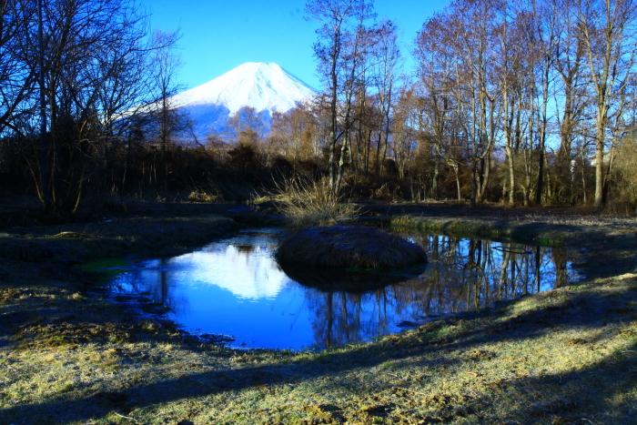 令和2年3月の富士 (9) ドジョウ池と富士_e0344396_16323469.jpg