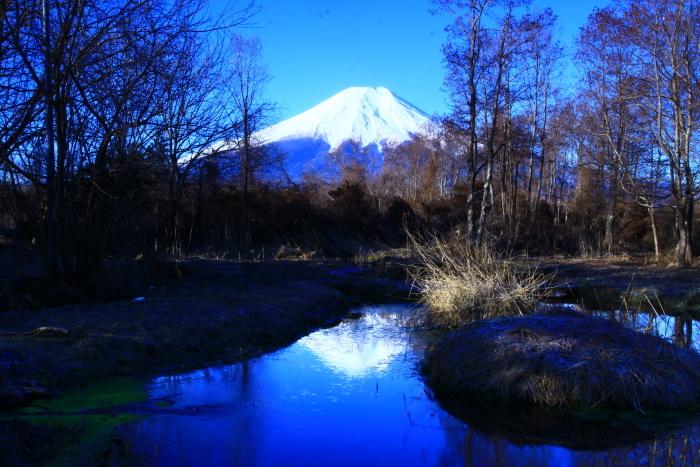 令和2年3月の富士 (9) ドジョウ池と富士_e0344396_16324108.jpg