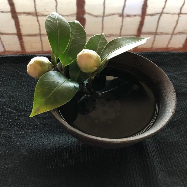 椿か山茶花か_e0245805_15061442.jpeg