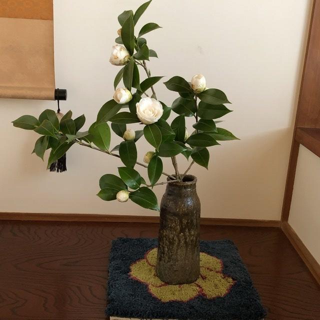 椿か山茶花か_e0245805_15082553.jpeg
