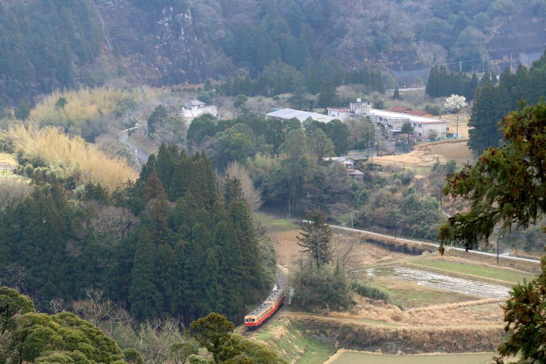 まだ冬枯れの季節 - 2020年晩冬・小湊鉄道 -_b0190710_21384697.jpg