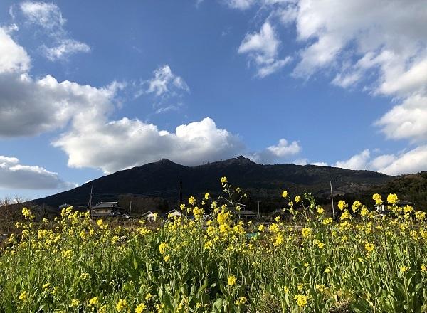 筑波山と菜の花と茅葺き屋根_b0100229_16530851.jpg