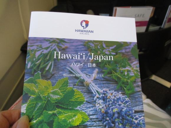 ハワイ NO8   6日目 _a0279743_14211302.jpg