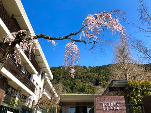 東山高等学校・中学校の桜_d0339676_16425339.jpg
