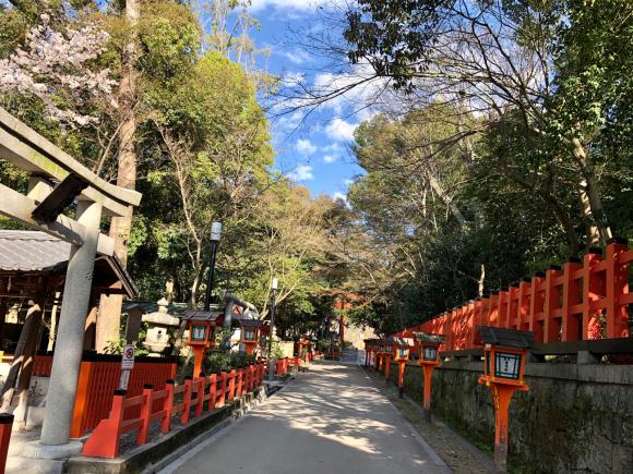 八坂神社_d0339676_19021970.jpg