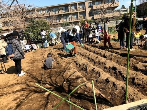 3/21 みんなの畑・かわべ農園~長いも掘り・ピザパーティー~_c0091679_23053936.jpg