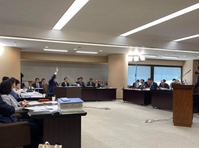 第6日目 R2年度埼玉県議会予算特別委員会 総括質疑_d0084783_10422721.jpg
