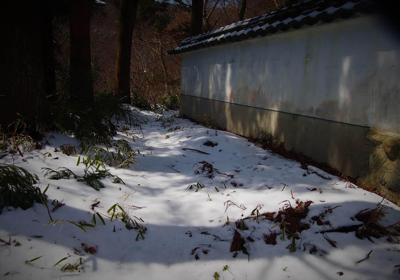 葛城山雪_e0254493_11123995.jpg