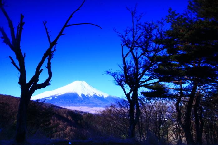 令和2年3月の富士 (10) 二十曲峠の富士_e0344396_21113725.jpg