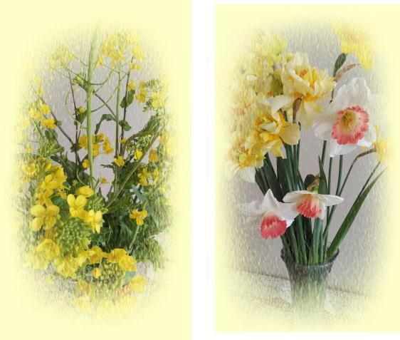 投稿)春の花_d0070316_12002093.jpg