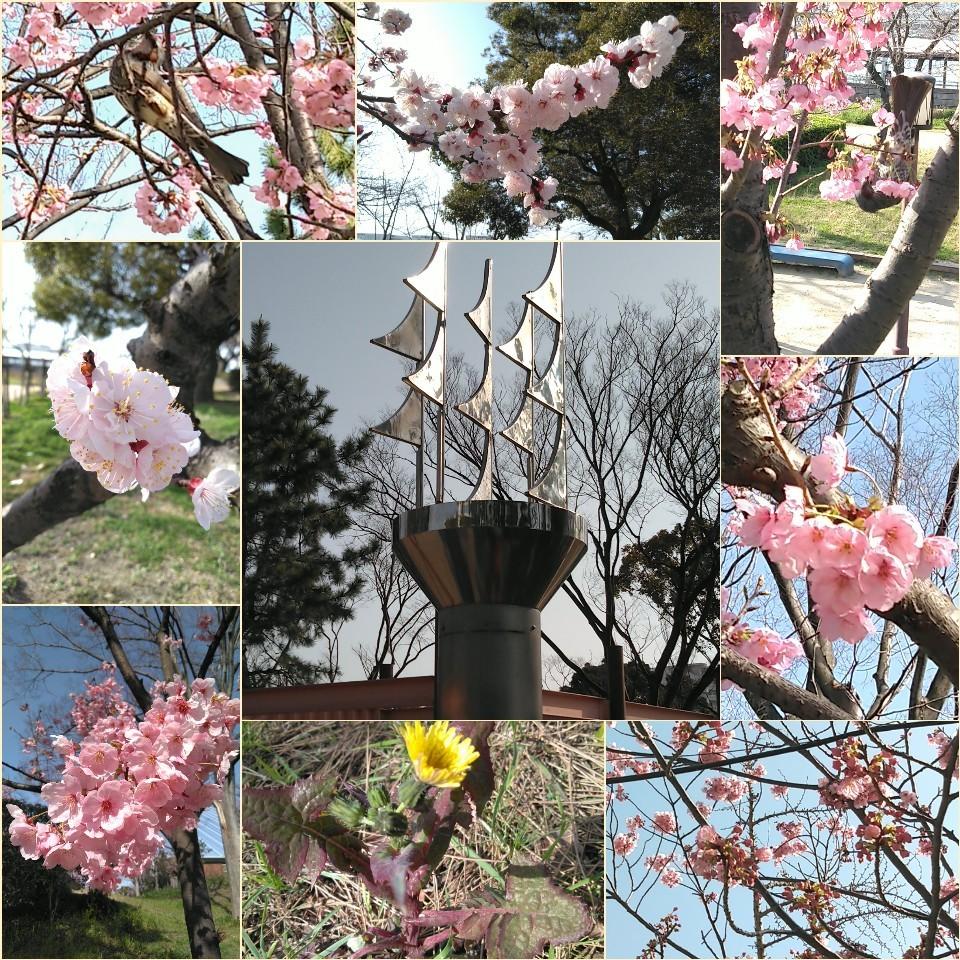 天保山公園にて🌊_c0289636_21452872.jpg