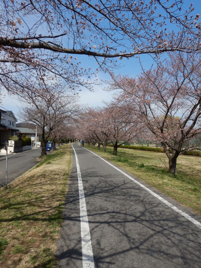春の小噺♪(3月21日の走行)_b0136045_15180900.jpg
