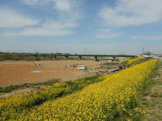 春の小噺♪(3月21日の走行)_b0136045_15190291.jpg