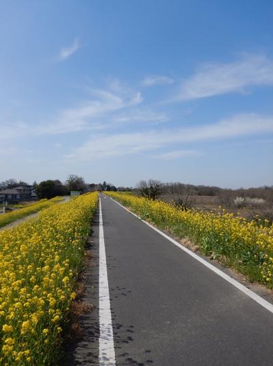 春の小噺♪(3月21日の走行)_b0136045_15194359.jpg