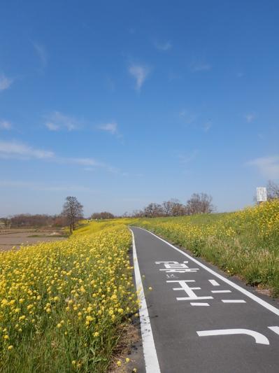 春の小噺♪(3月21日の走行)_b0136045_15202891.jpg