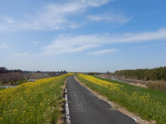 春の小噺♪(3月21日の走行)_b0136045_15203282.jpg